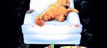 А моно-СРО, словно коты ленивые…