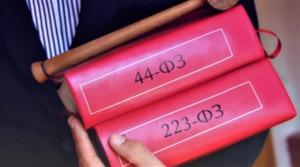 Полезные дополнения по 223-ФЗ и 44-ФЗ