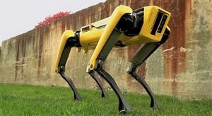 Робот-пёс Spot