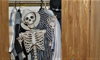 Скелеты в каждом СРО-шкафу