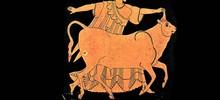 Что не позволено «СРО-быкам»
